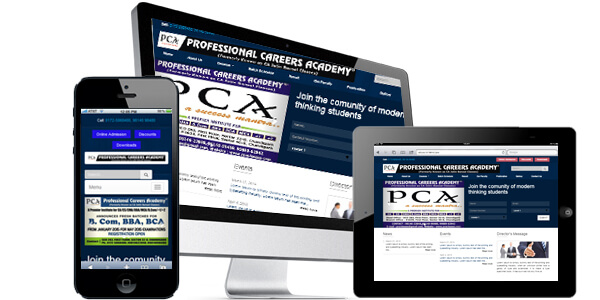 Professional Careers Academy